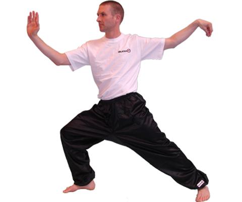 Kung Fu/Qigong/Taiji